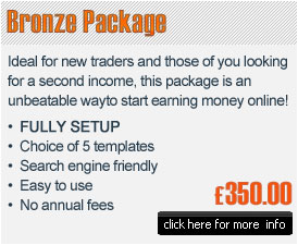Bronze e-commerce package