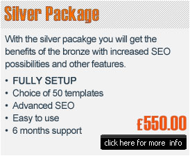 Silver e-commerce package